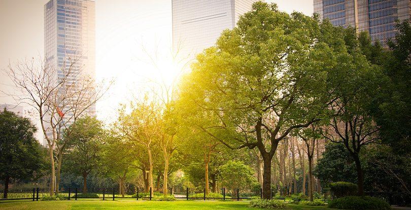 Жизнь в парке: 5 «зеленых» ЖК Алматы