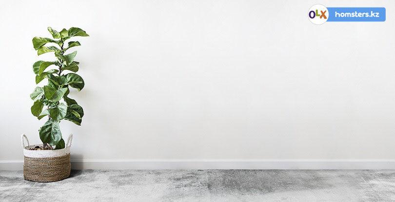 Сделай сам: 5 ЖК Нур-Султана (Астаны) со свободной планировкой