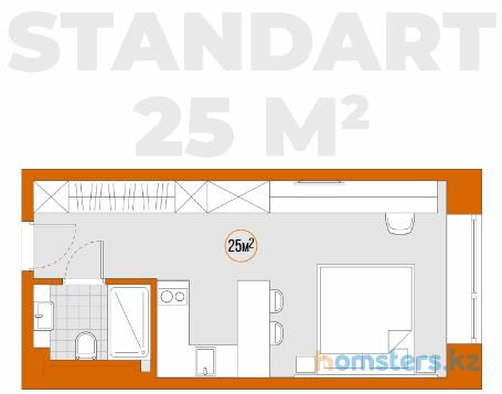 standart 25